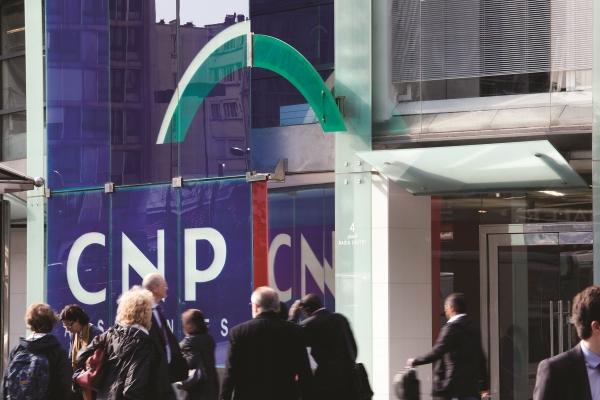 CNP_web