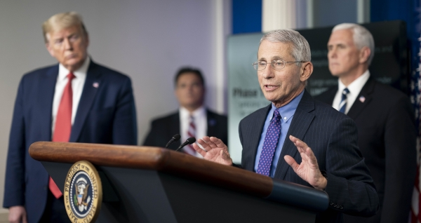 Fauci The White House web